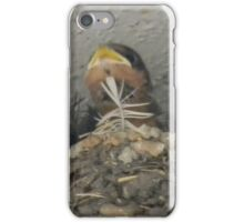 Hungry Barn Swallow Babies iPhone Case/Skin