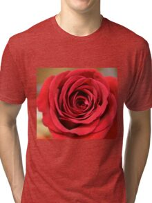 Lovely red rose flower close up picture. Floral photography. Tri-blend T-Shirt