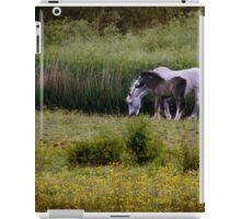 Down in the meadow iPad Case/Skin