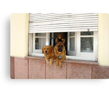 Security System - On Canvas Print