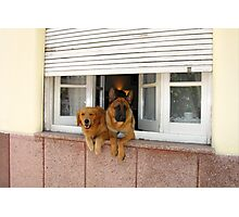 Security System - On Photographic Print
