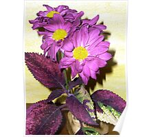 purplejoy Poster
