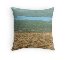 A Pause For Breath Throw Pillow