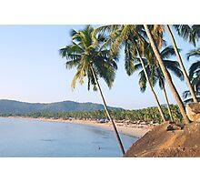 Palm tree beautiful landscape Photographic Print