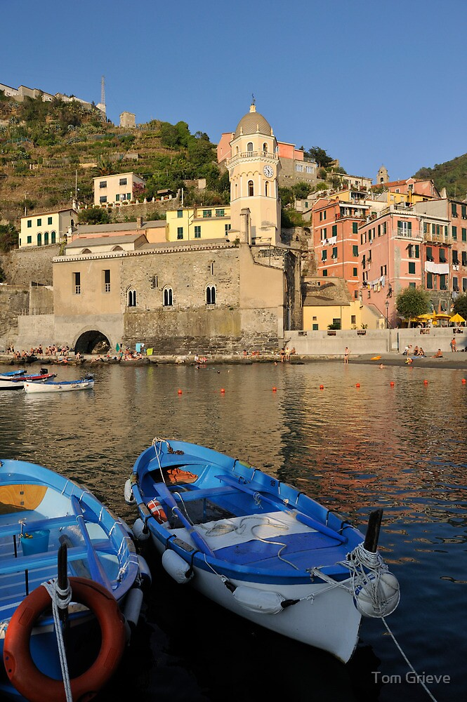 Boats in Riomaggiore, Cinque Terre, Italy by Tom Grieve