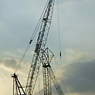 Crane silhouette by Lauren Banks