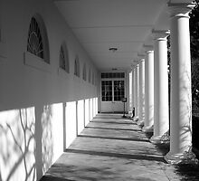 Path to the West Wing by FuccisPhotos