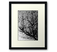 OnePhotoPerDay series: 071 by L. Framed Print