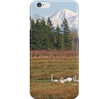 Mt Baker and Swans iPhone Case/Skin