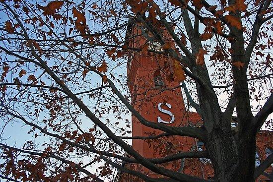 Stout University by beveralyJ