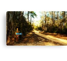 Pierce Lane Canvas Print