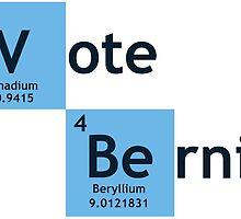 Vote Bernie Sanders  by ozdilh