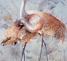 Sandhill Cranes by soonywarren