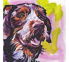 German Wirehaired Pointer Bright colorful pop dog art Photographic Print