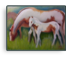 Beautiful Family Canvas Print