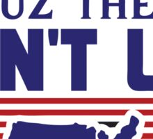 They Hate Us Cuz They Ain't Us - USA Sticker