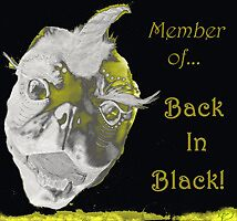 Back in Black ~banner by Lacey Scarbro