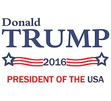 Donald Trump 2016 Election Gifts Photographic Print