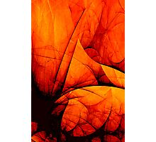 Orange.Overdose Photographic Print
