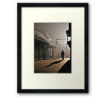 Strangers in the Night Framed Print