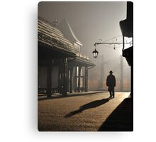 Strangers in the Night Canvas Print
