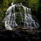 Nelson Falls by Shane Viper