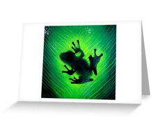 """Hide and seek"" Green tree frog Greeting Card"