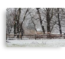 Snowy Day in the Park Canvas Print