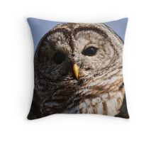 Barred Owl - Brighton, Ontario Throw Pillow