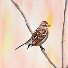 Sparrow I by jwwalker