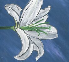 White Lily by satchmo395