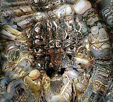 Poseidon- God of the Sea, Earthquakes, Horses, a Shapeshifter by LaFleureRouge1