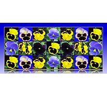 Pansy Faces Collage  Photographic Print