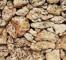 Taketome Wall by J J  Everson