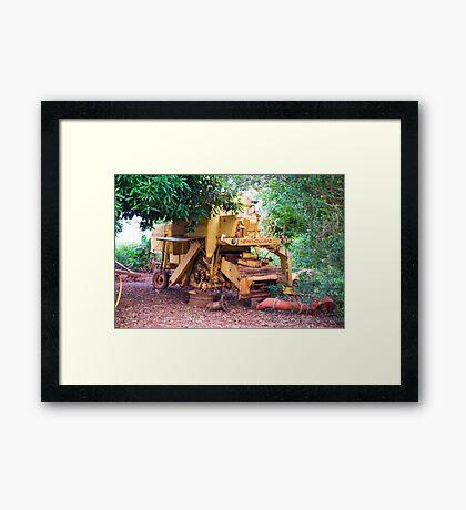 Redneck Framed Print