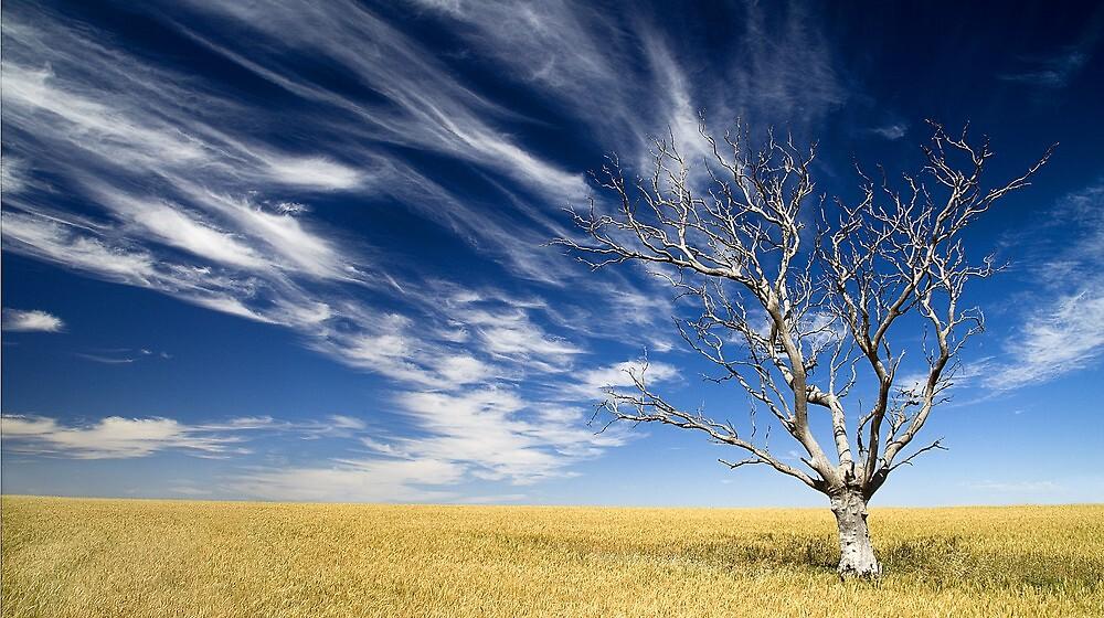 Hartley South Australia by Paul  Johnson