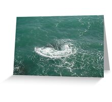 Water Hole Greeting Card