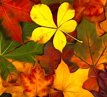 Colorful Autumn by Tr0y