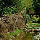 Stringers Creek, Right Hand Branch, Walhalla by Joe Mortelliti