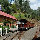 Walhalla Railway Station,Stringers Creek Gorge by Joe Mortelliti