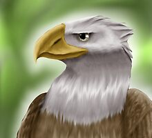 Bald Eagle by BriannaP
