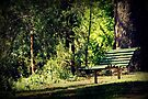 The Bench - On A Sunday Afternoon by Evita
