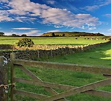Wild Slack Farm North Yorkshire UK by James  Key