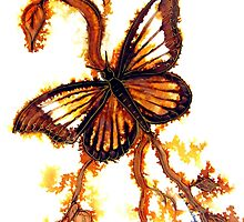 Reflections of Gold, Butterfly by Linda Callaghan