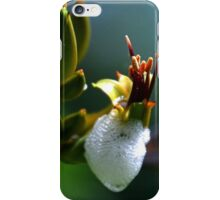 Spittlebugs about........... iPhone Case/Skin