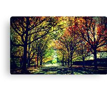 Autumn In Canberra Canvas Print