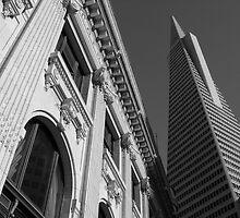 San Francisco - Transamerica Pyramid by Richard McIntyre