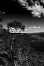 Burragorang Valley NSW by Evita