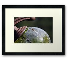 spider ball Framed Print