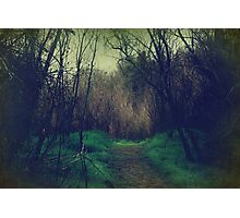 Disappearance Photographic Print